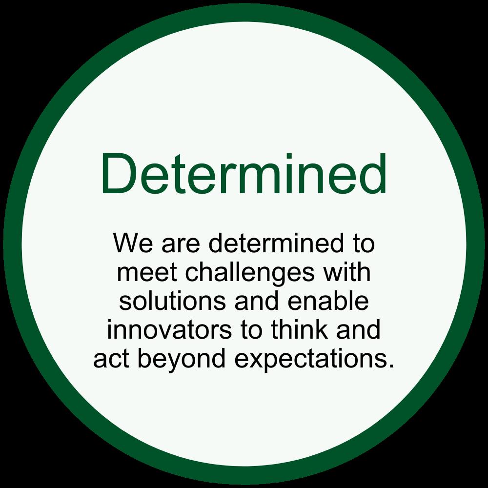 KTN - Determined