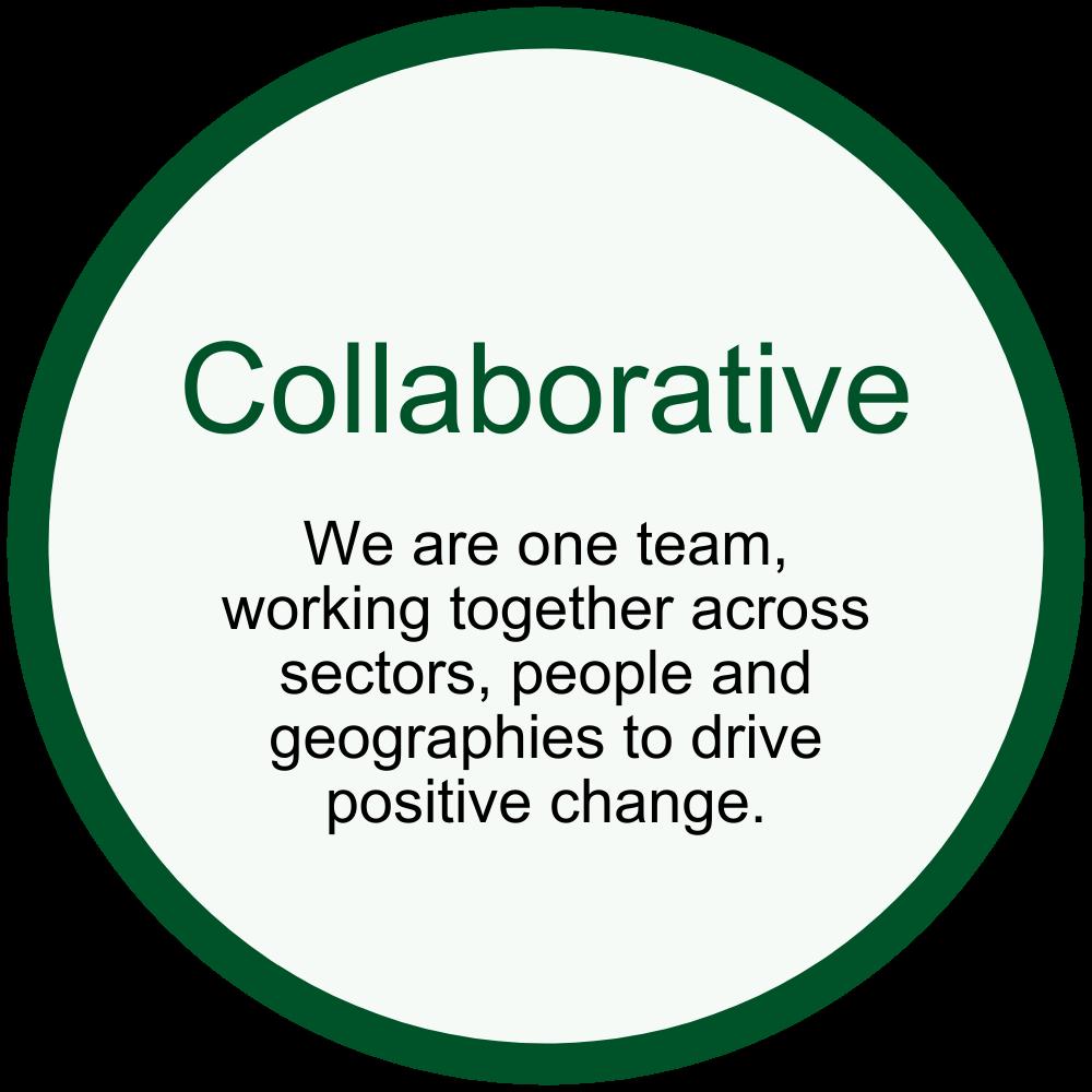 KTN - Collaborative